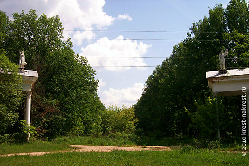 Центральная аллея заросла кустарником.