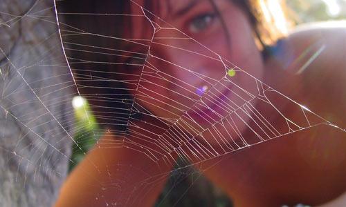 Не худейте сверх меры — паук утащит