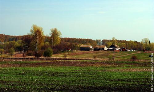 Деревня Елизаветино Малоархангельского района