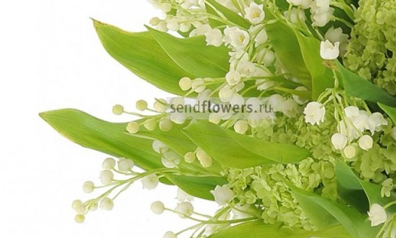 Компания AMF – международная сеть доставки цветов.