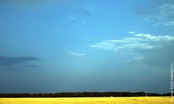 Поле неподалёку от Глазуновки.
