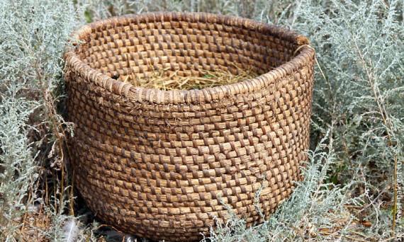 Производство севалок могло бы закинуть Россию на первые места в списке стран-производителей севалок.
