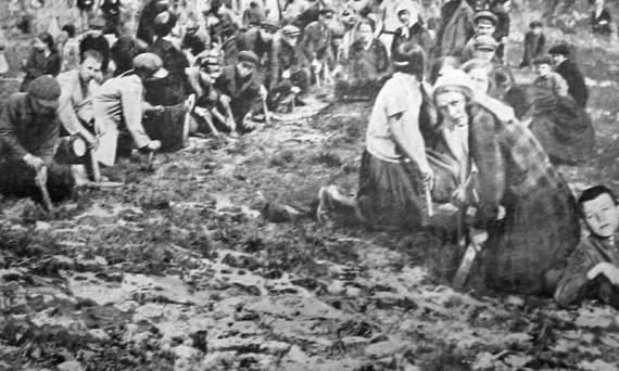 Советские крестьяне на посадке лесополосы. 1926 год.
