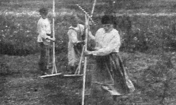 Ворошение сена. 1927 год.