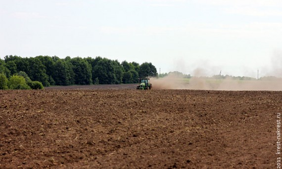 Сельскохозяйственная земля.