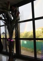Свадебные приметы для счастья - радуга на небе.