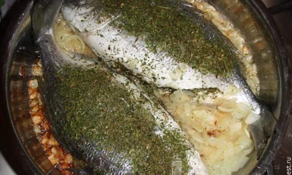 Вкусная и полезная рыба без мух. 2011 год
