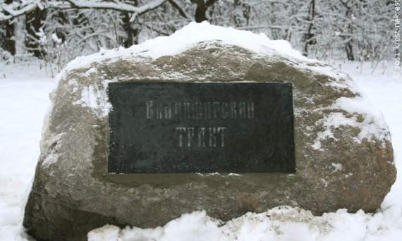 Терлецкий парк. Москва. 2012 год.